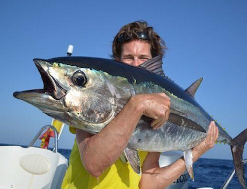 Rodrigues Island Monster Dogfish Tuna Fishing Report